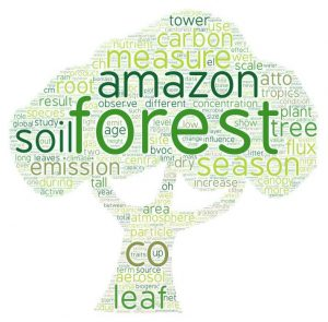 """Word cloud from all abstracts accepted from EGU 2019 session """"IntactAmazon forest - a natural laboratory of global significance"""""""