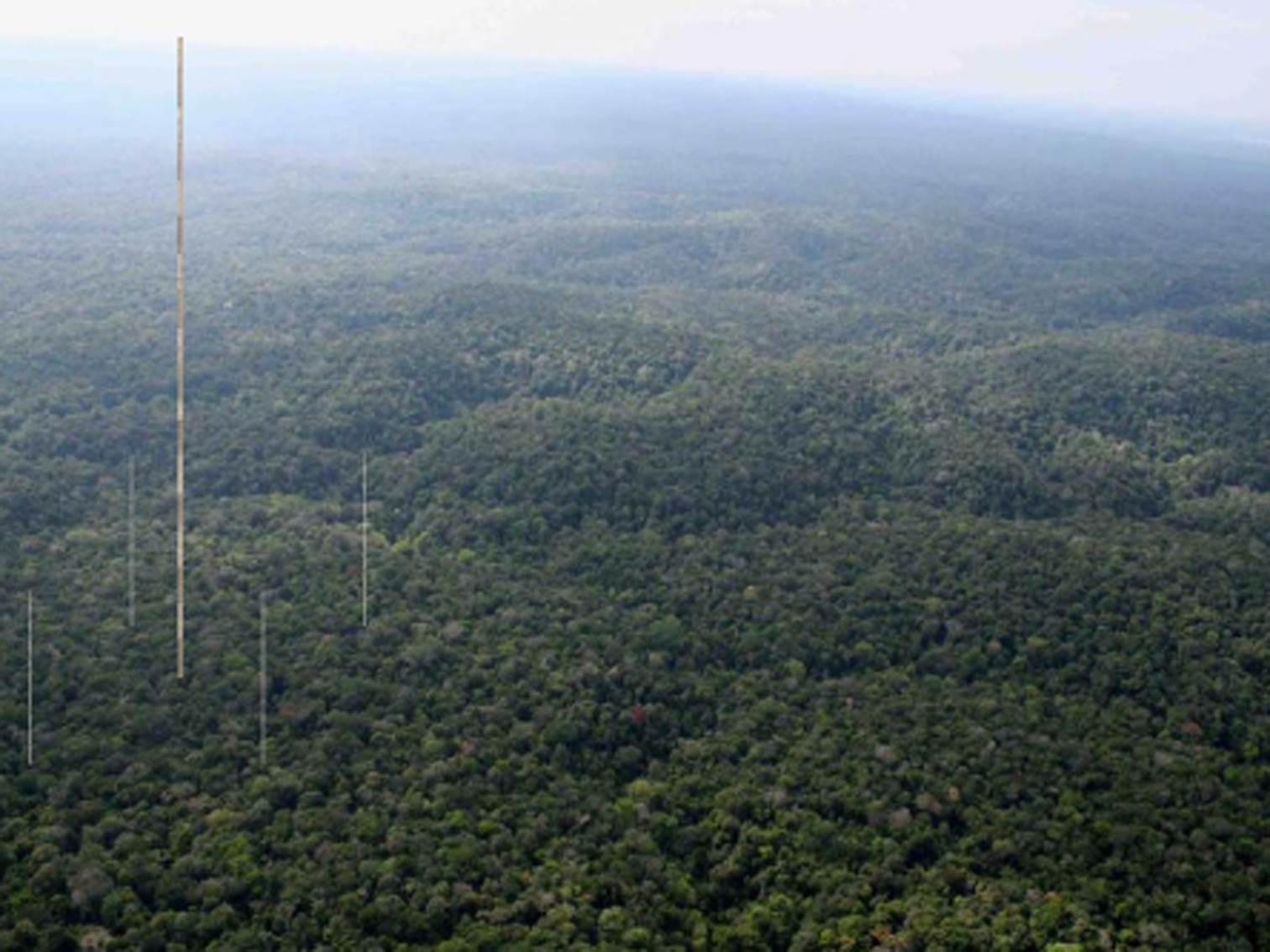 "<span  class=""uc_style_uc_tiles_grid_image_elementor_uc_items_attribute_title"" style=""color:#ffffff;"">We had the idea of a very tall tower in the middle of the Amazon rainforest, surrounded by four smaller tower. © ATTO</span>"