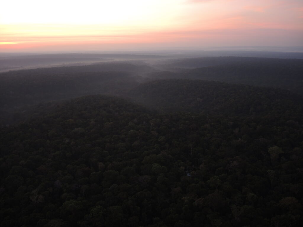 Sunrise seen from the top of the ATTO Tower.