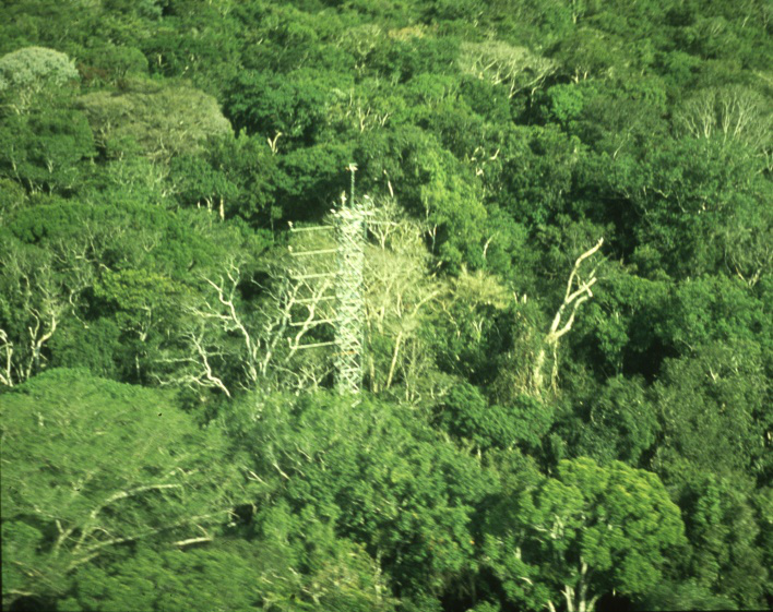 "<span  class=""uc_style_uc_tiles_grid_image_elementor_uc_items_attribute_title"" style=""color:#ffffff;"">45 m tall tower in the Adolpho Ducke Reserve near Manaus</span>"