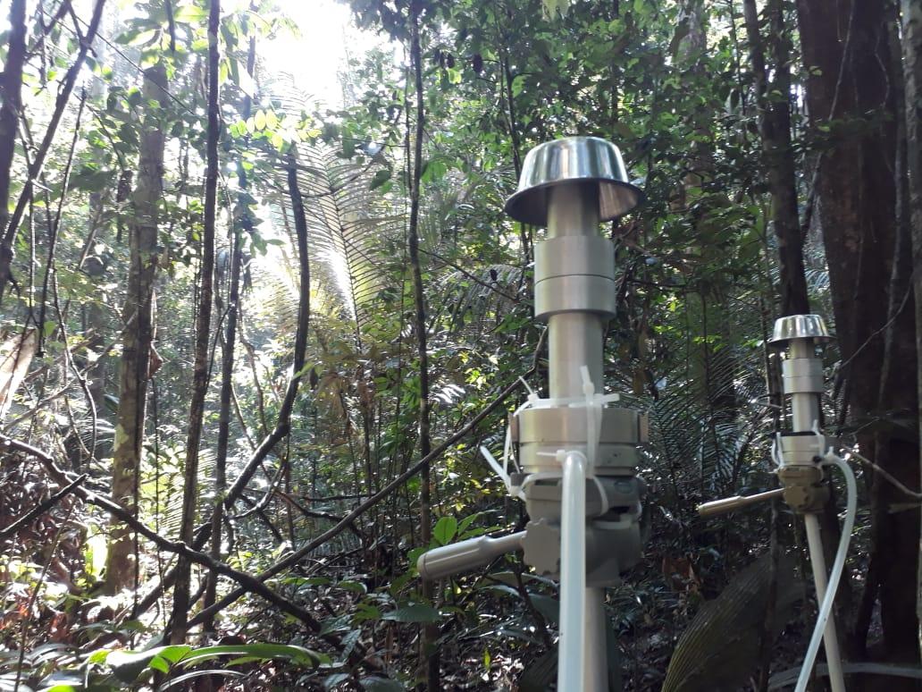 Sampling set-up for bioaerosols near the forest floor
