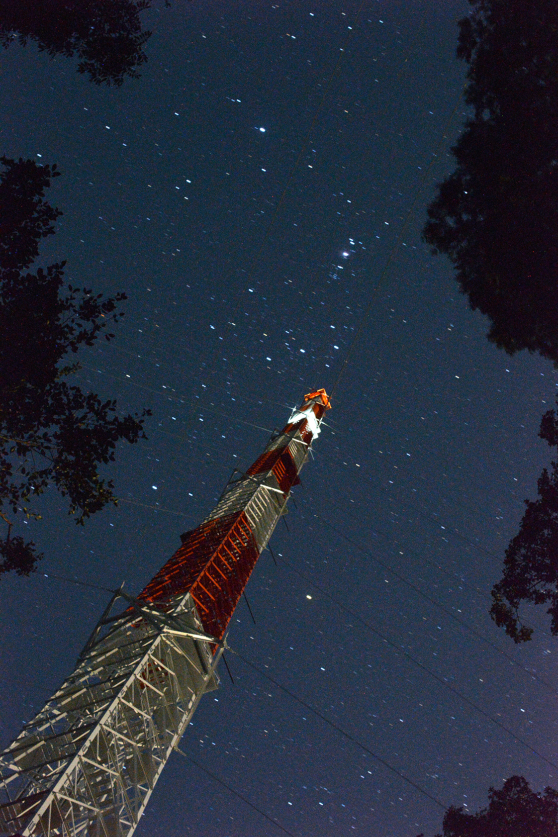 A starry night at ATTO. © Andrew Crozier / MPI-C