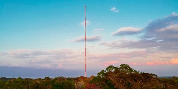 The ATTO tall tower extends above the rainforest canopy at sunset. It was inaugurated 5 years ago, marking one of two big miles that celebrate their anniversary this year.